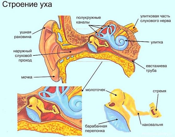Лечение сильных головных болей при гайморите