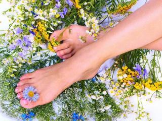 Потливость ног (гипергидроз). Как устраниить потливость ног (уход за ногами)
