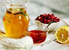 Рецепты от простуды (народные методы лечения)