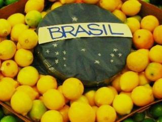Бразильская диета
