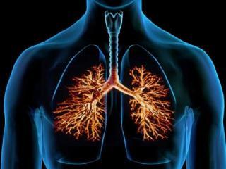 Бронхит. Лечение бронхита и кашля. Старинные рецепты народной медицины