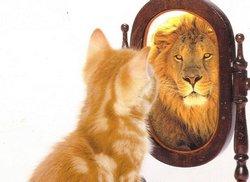 Неуверенному в себе человеку нужно воспитывать в себе понимание, что не ошибается только тот, кто ничего не делает.