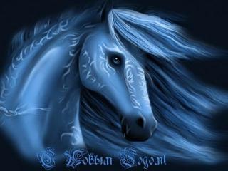 Наступает Новый 2014 год – год Синей деревянной Лошади