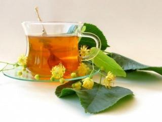 Лекарственные травы для похудения: рецепты отваров