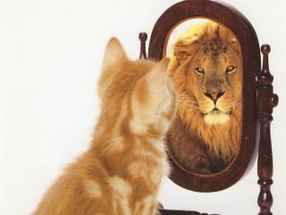 Уверенность в себе помогает жить и выживать (женская психология)
