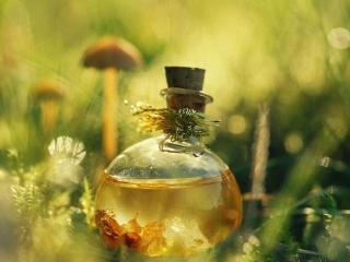 Натуральные масла лекарственных растений в народных рецептах