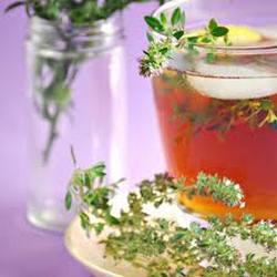 Лекарственные травы и народные рецепты