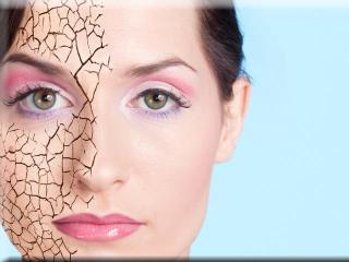 Сухая кожа лица. Особенности ухода за сухой кожей лица